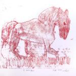 cheval blanc-1