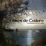 GRAINES_DE_CULTURE_AFFICHE