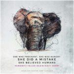 """Lettre de Shila : """"Eléphante sauvage morte de cruauté"""""""