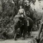 """Lettre de Shila : """"L'éléphant et le cinéma"""""""