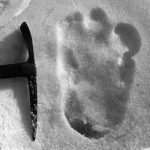 """Lettre de Shila : """"Croire plutôt que savoir ?  L'histoire de l'abominable homme des neiges"""""""