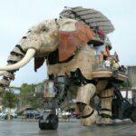 """Lettre de Shila : """"Elephantus ex machina"""""""