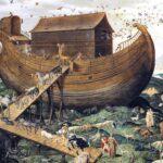"""Lettre de Shila : """"L'arche de Noé"""""""